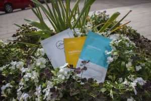 Read more about the article Collective Sheet Mask Review